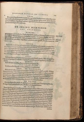 Image of Fuchs-1542-743