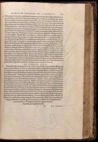 Image of Fuchs-1542-757
