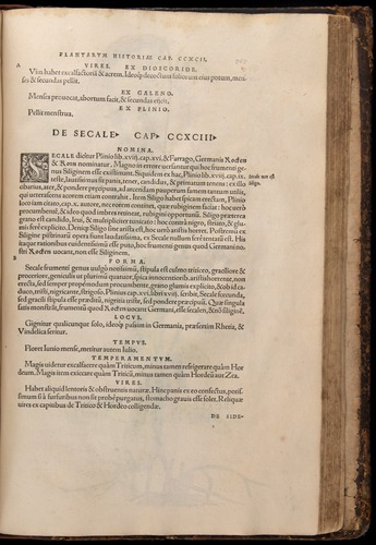 Image of Fuchs-1542-767