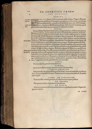 Image of Fuchs-1542-770
