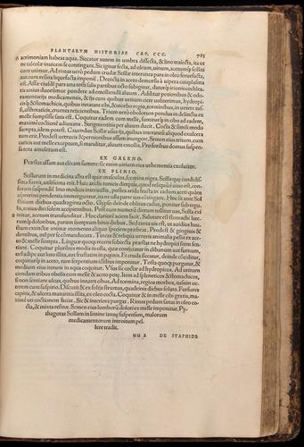 Image of Fuchs-1542-783