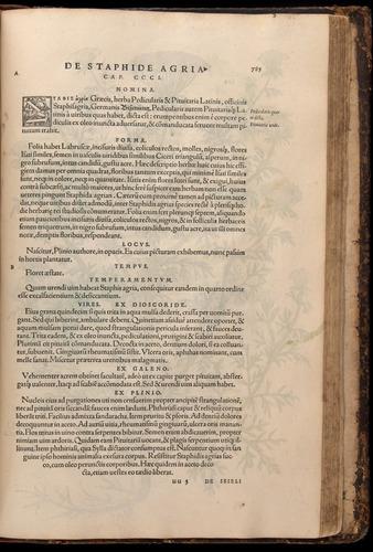 Image of Fuchs-1542-785
