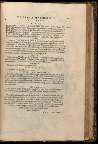 Image of Fuchs-1542-787