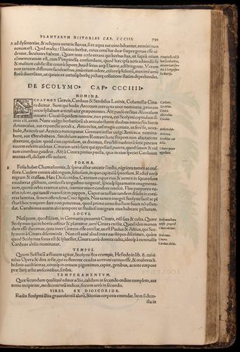 Image of Fuchs-1542-791