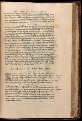 Image of Fuchs-1542-799