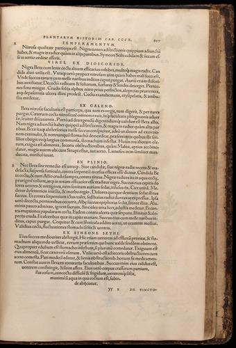 Image of Fuchs-1542-807