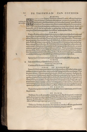 Image of Fuchs-1542-816
