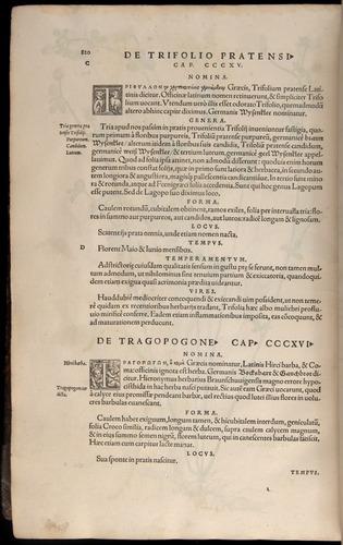 Image of Fuchs-1542-820