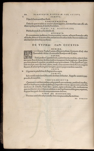 Image of Fuchs-1542-822