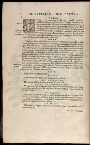 Image of Fuchs-1542-830