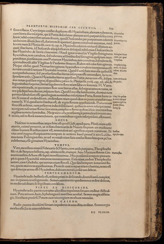 Image of Fuchs-1542-839