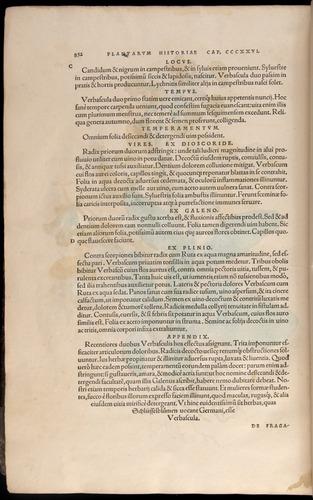 Image of Fuchs-1542-852