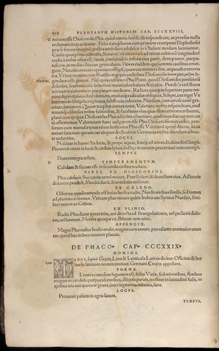 Image of Fuchs-1542-858