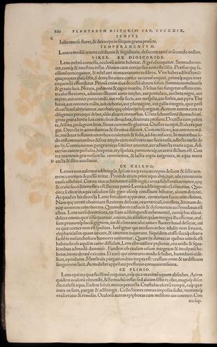 Image of Fuchs-1542-860