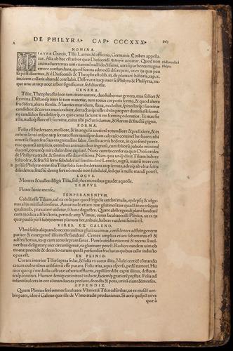Image of Fuchs-1542-863
