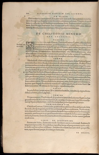 Image of Fuchs-1542-866