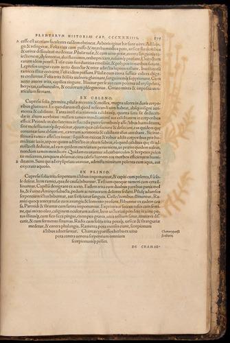 Image of Fuchs-1542-875