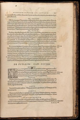 Image of Fuchs-1542-887