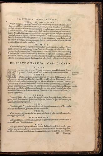 Image of Fuchs-1542-889