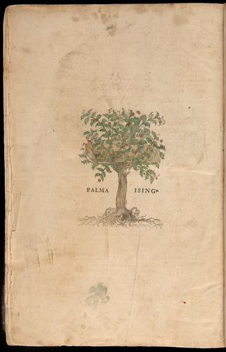 Image of Fuchs-1542-zzz-e1v