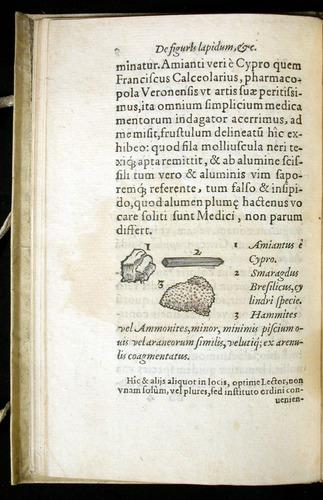 Image of Gesner-1565a-0005v