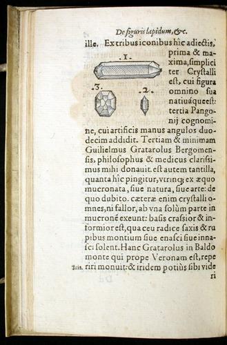 Image of Gesner-1565a-0018v