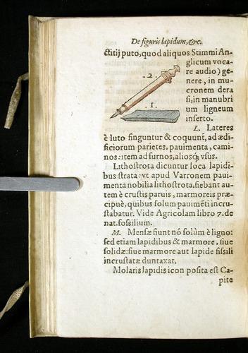 Image of Gesner-1565a-0104v