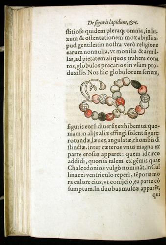Image of Gesner-1565a-0105v