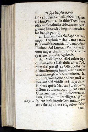 Image of Gesner-1565a-0129v