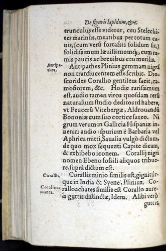 Image of Gesner-1565a-0134v