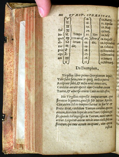 Image of Theodorico-1570-200