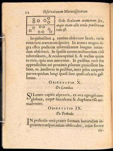 Image of Borel-1656-012