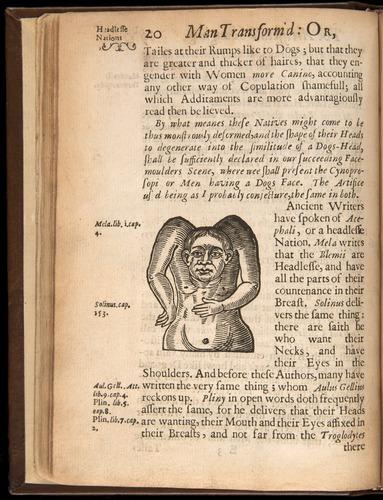 Image of Bulwer-1653-020