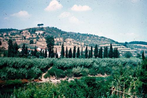 Image of Galileo-Roller-303-Tuscany