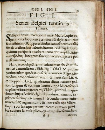 Image of Griendel-1687-005