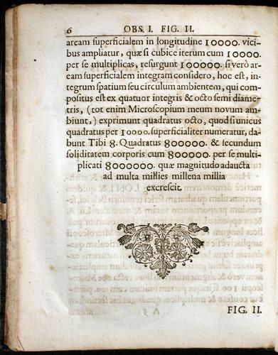 Image of Griendel-1687-006