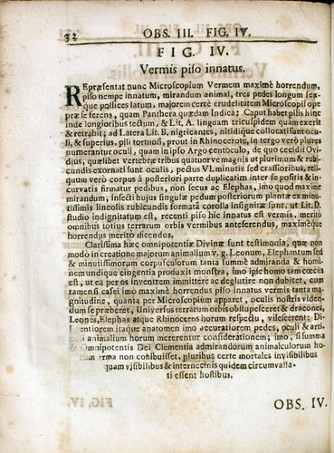 Image of Griendel-1687-032