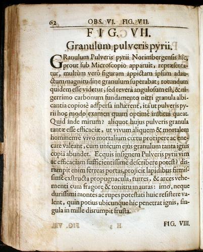 Image of Griendel-1687-062