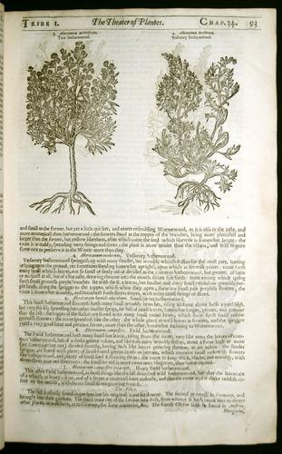 Image of Parkinson-1640-I5r