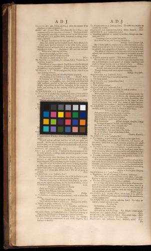 Image of Johnson-1755-v1-zzzz-det-color-01i01v