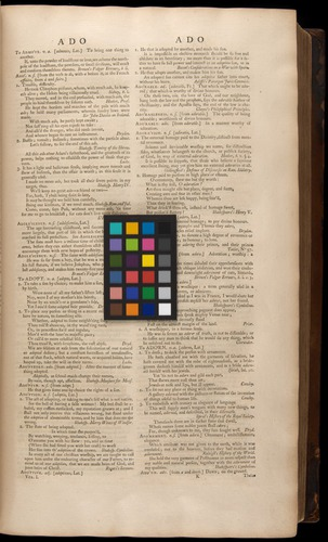 Image of Johnson-1755-v1-zzzz-det-color-01ko1r