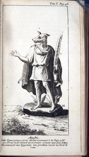Image of Pluche-1739-v1-3368