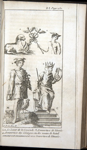 Image of Pluche-1739-v1-3389