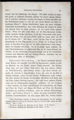 Image of Darwin-F1065.1-1871-00011