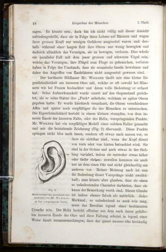 Image of Darwin-F1065.1-1871-00018
