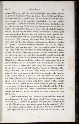 Image of Darwin-F1065.1-1871-00061