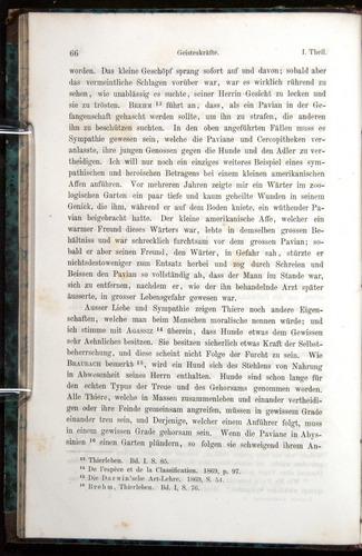 Image of Darwin-F1065.1-1871-00066