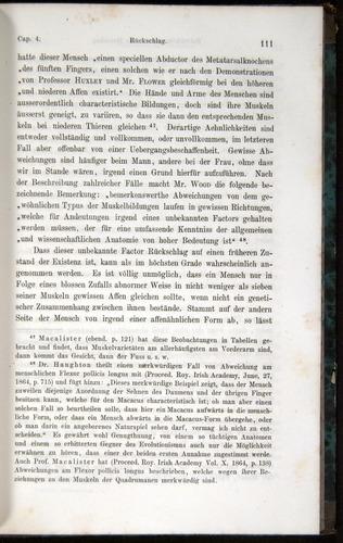 Image of Darwin-F1065.1-1871-00111