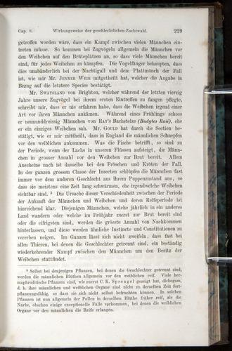 Image of Darwin-F1065.1-1871-00229
