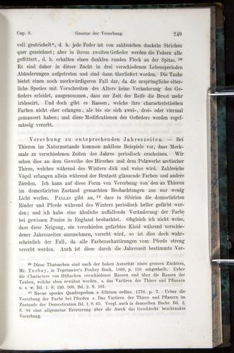 Image of Darwin-F1065.1-1871-00249
